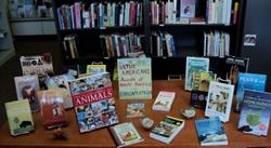 Everybody Reads Bookstore